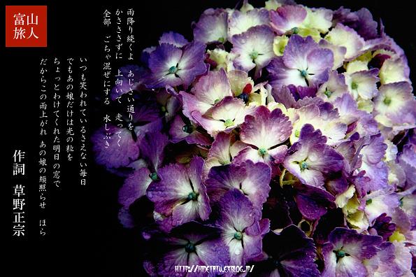 f0052569_1733361.jpg