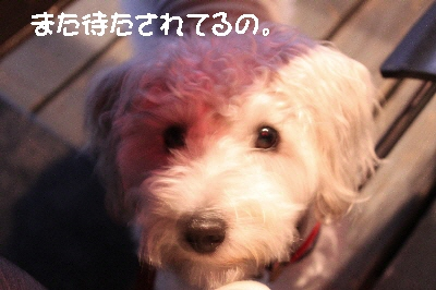 f0203369_005189.jpg