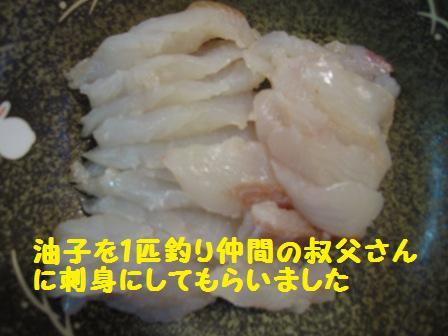 f0212597_1059298.jpg