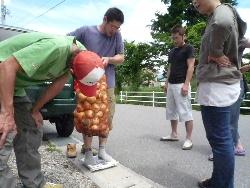 とよしな 玉ねぎ祭り 2010_d0008402_18343332.jpg
