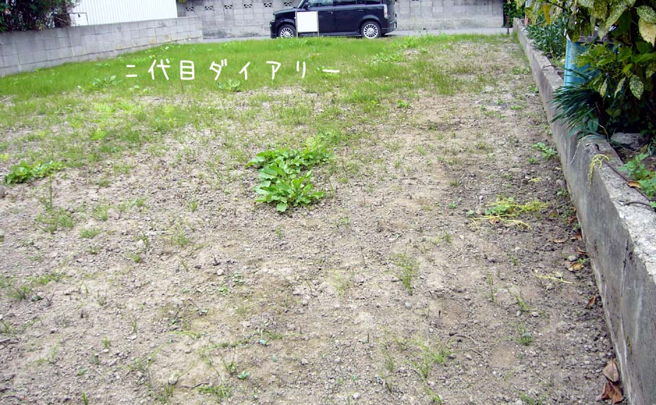 f0116421_2216175.jpg