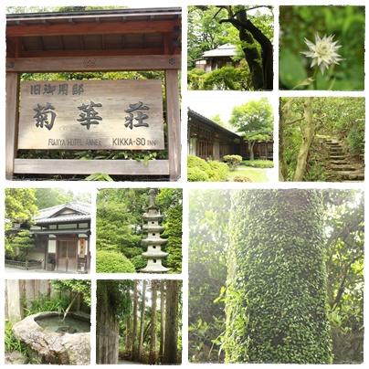 旧御用邸 菊華荘でランチ_c0141025_20305830.jpg