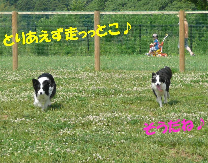 c0147241_012240.jpg