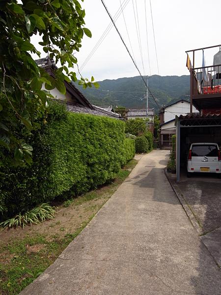 100621 塀が無い_b0129659_8372159.jpg