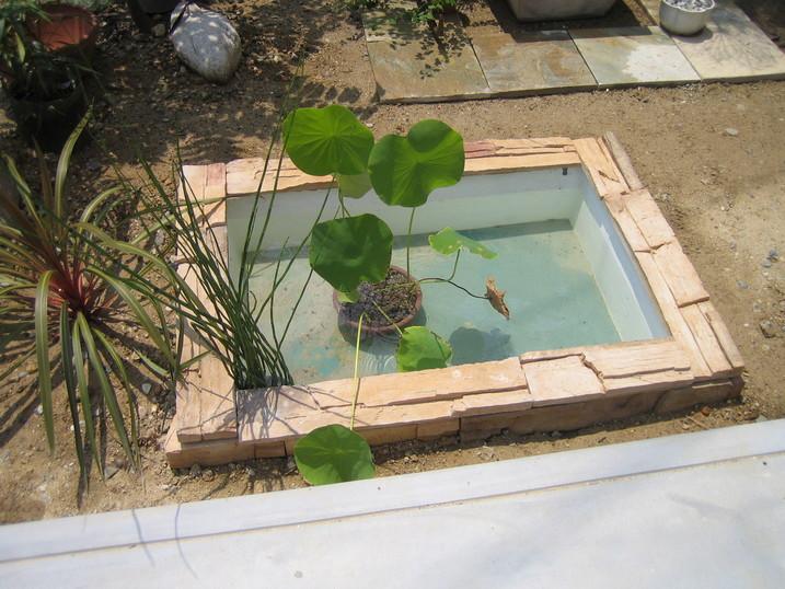 水のガーデン☆簡単!お池の作り方_a0142778_17441669.jpg
