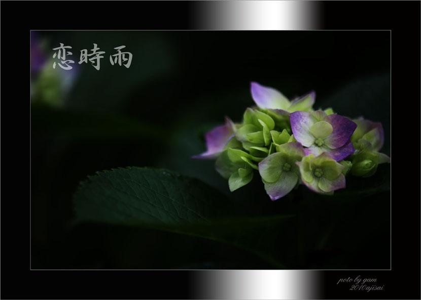 f0195893_1723916.jpg
