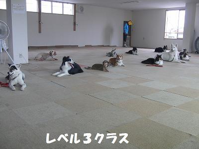 f0186040_0351771.jpg