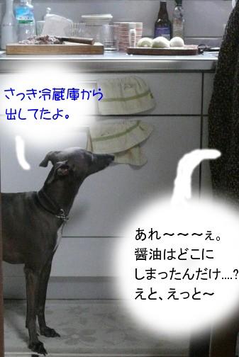 f0217153_1532571.jpg