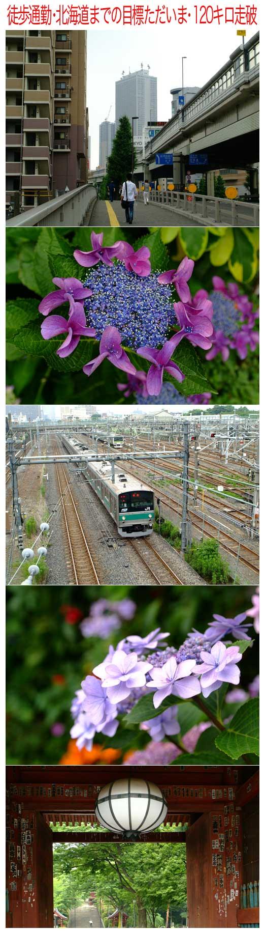 北海道まで_a0155464_1214211.jpg