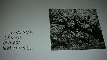 b0154584_6312284.jpg