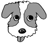 まご犬たちのプロフィール_d0176092_146299.jpg