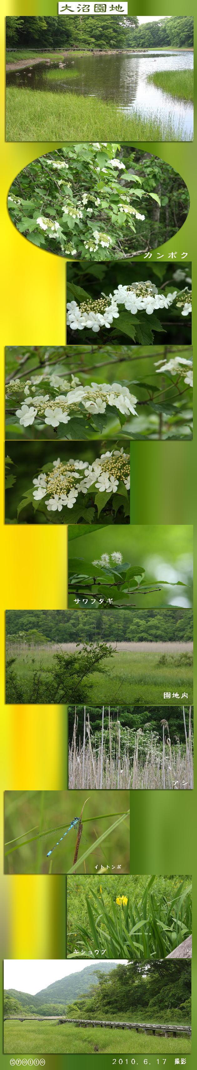 f0164592_834747.jpg