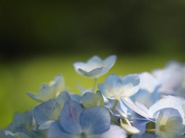 f0180607_3404440.jpg