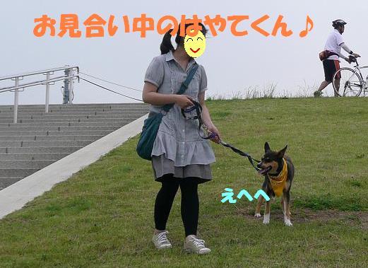 f0121712_8341414.jpg