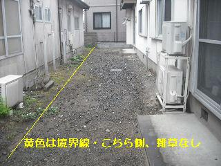 f0031037_22137100.jpg