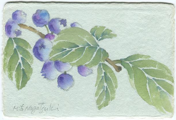 ブルーベリーの水彩画~和紙_b0089338_231054100.jpg