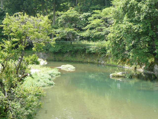 川のせせらぎの音が 聴こえるようでしょう? (^_-)-☆_f0099147_4275458.jpg