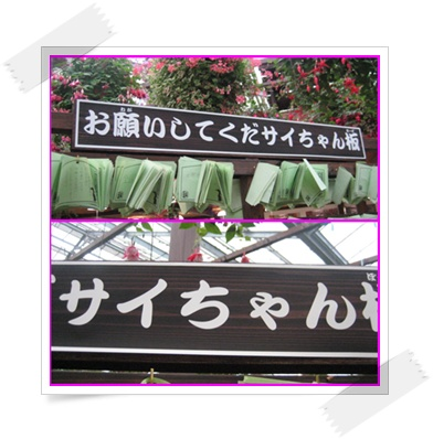 神戸へ_c0049950_20412843.jpg