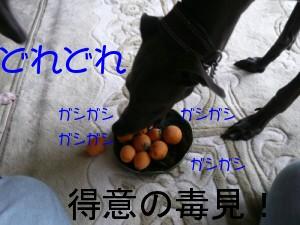 f0217153_15125357.jpg