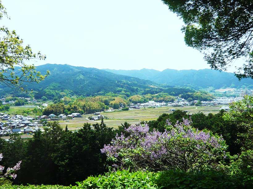 奈良の明日香村 de サイクリング _c0191808_082882.jpg