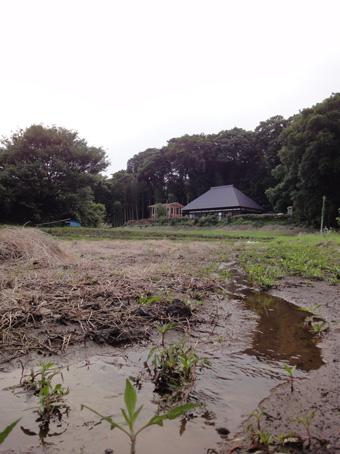 「小倉町の家」の書庫が上棟しました。その1_c0195909_12161948.jpg