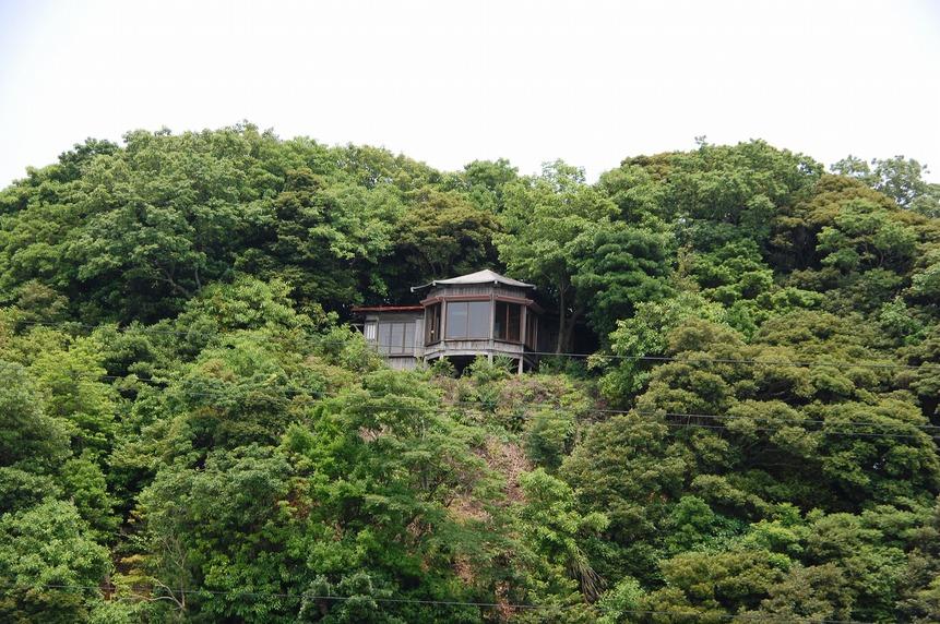 初夏の湖山池遊覧と阿弥陀堂見学会_f0197821_16481616.jpg
