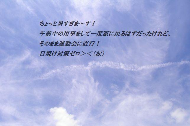 手軽に♪トマトたっぷりチキンキーマ風カレー_d0104926_5121373.jpg