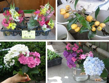 FRI  25  JUNE  2010_a0099744_22264186.jpg