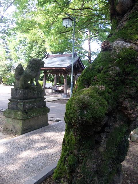 豊玉姫神社in嬉野。_b0126653_145288.jpg