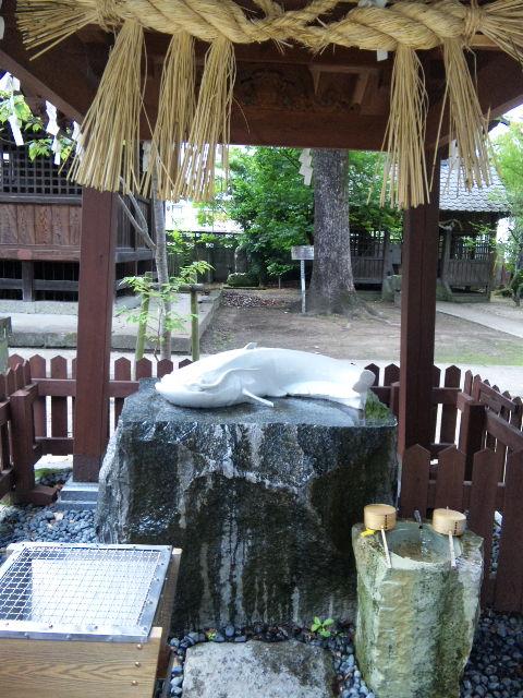 豊玉姫神社in嬉野。_b0126653_1452898.jpg