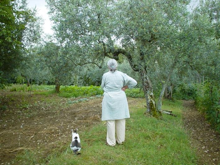 野菜を育て、バンビと遊ぶ_c0113755_0291980.jpg