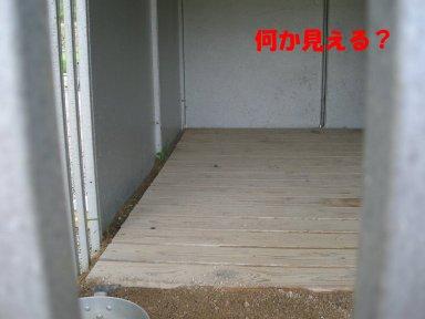 b0113663_8475989.jpg