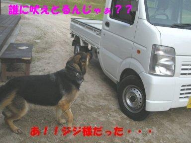 b0113663_8553177.jpg