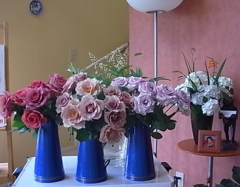 薔薇の一日教室@北鎌倉 【おまけ】侘助_b0051666_171554100.jpg