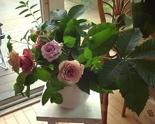 薔薇の一日教室@北鎌倉 【おまけ】侘助_b0051666_1719888.jpg
