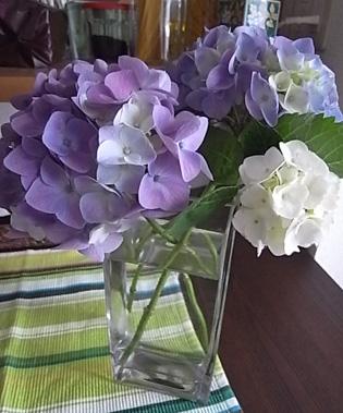 薔薇の一日教室@北鎌倉 【おまけ】侘助_b0051666_17241920.jpg