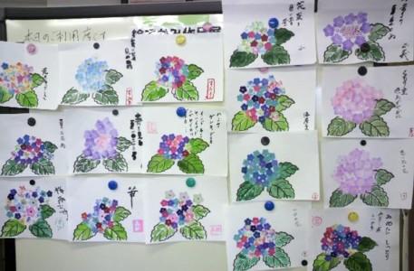 老人ホームに紫陽花が咲きました♪_b0140270_8205489.jpg