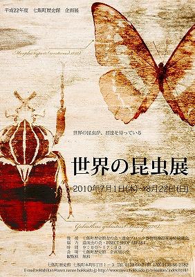 企画展「世界の昆虫展」のご案内_f0228071_19352984.jpg