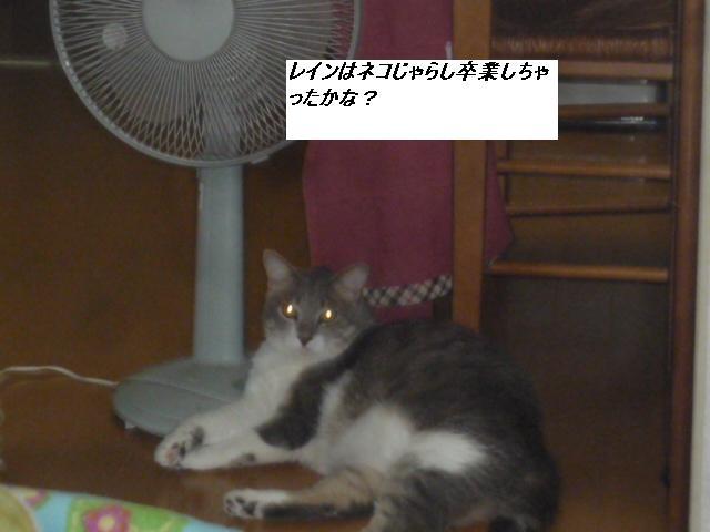 b0112380_1948890.jpg