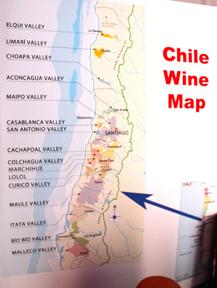 チリ・ワインを飲んでチリの震災復興を助けよう!_c0050387_16516.jpg