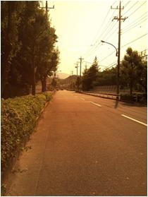 TeamJAMIS善波昭選手アイウェアインプレッション!_c0003493_17512734.jpg