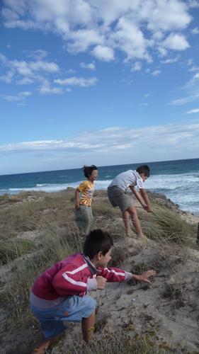 子供達と海辺のお散歩_f0106597_21363070.jpg