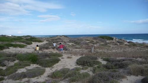 子供達と海辺のお散歩_f0106597_2142233.jpg