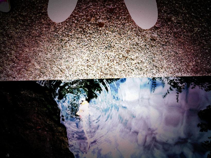 雨上がりの午後_b0060102_14253530.jpg