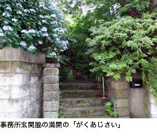 d0097607_1894593.jpg