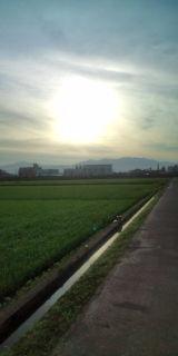 歓喜の朝_a0059209_20314865.jpg