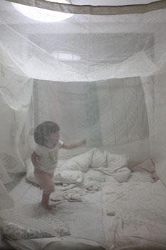 蚊帳_f0208315_9432432.jpg