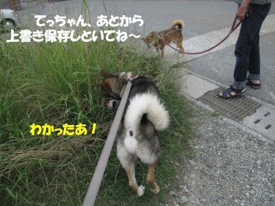 f0143123_20122194.jpg