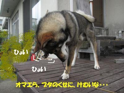 f0143123_2091430.jpg
