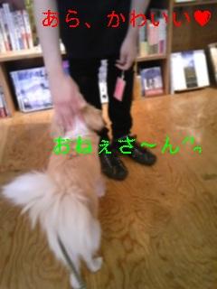 f0148927_15254637.jpg